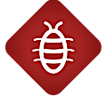 diagnostic-termite_diagnostic-immobilier_AI-Diagnostic
